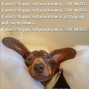 Sleep & Fun!!